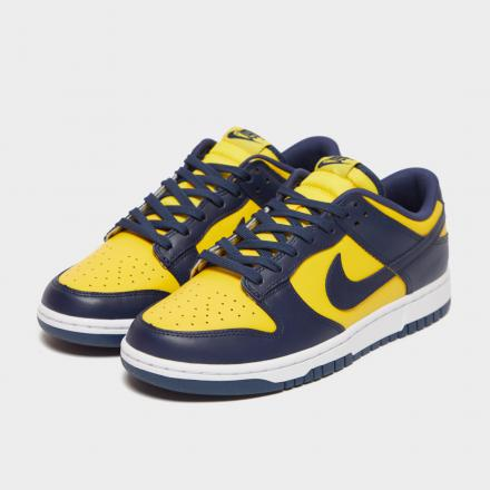 Nike Dunk Low Michigan DD1391 700 1
