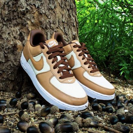 Nike Air Force 1 Low Acorn DJ6395 100 00